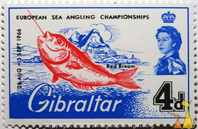 Red Bream, Gibraltar, stamp, fish, 28 Aug-2 Sept, 1966, European sea angling championship, Red Bream, Queen Elizabeth, 4 d, Pagellus bogaraveo