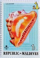 Red Helmet, Republic of Maldives, Maldives, stamp, shell, 1 L, Cassis nana