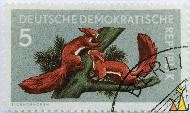 Red Squirrels, Deutsche Demokratishe Republik, Germany, stamp, mammal, Stauf, 5, Eichhörnchen, Sciurus vulgaris