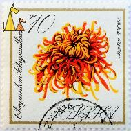 Red and yellow Mum, Polska, Poland, stamp, plant, flower, Chrysanthemum spp, Chrusantemum, PWPW, P Matecki