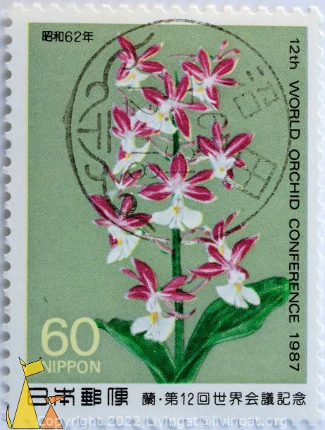 Red orchid, Nippon, Japan, stamp, plant, flower, orchid, 60