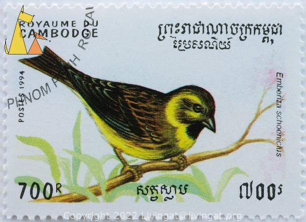 Reed Bunting, Royaume du Cambodge, Cambodia, stamp, bird, postes, 1994, 700 R, Emberiza schoeniclus