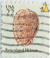 Reticulated Helmet, USA, stamp, shell, 22, Cypraecassis testiculus