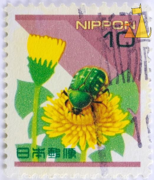 Rose Chafer on Dandelion, Nippon, Japan, stamp, insect, Cetonia aurata, 10, Taraxacum spp
