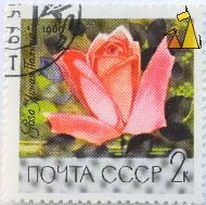 Rose painting, CCCP, Russia, stamp, plant, flower, Rosa spp, noyta, 2 K, 1969
