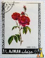 Rosier Eveque, Ajman, UAE, stamp, plant, flower, rose, 1 Rl, P.J. Redoute, Postage, Rosier eveque, Rosa gallica