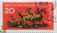 Row Deer Family, Deutsche Demokratishe Republik, Germany, stamp, mammal, Stauf, 20, Capreolus capreolus, family, Reh