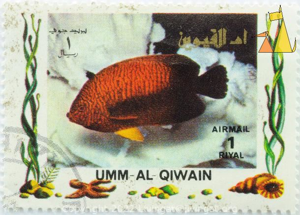 Russet Angelfish, Umm al Qiwain, Umm al Quwain, UAE, stamp, fish, Air Mail, 1 Riyal, Centropyge potteri
