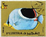 Saddle Butterflyfish, Fujeira, Fujairah, stamp, fish, Air Mail, gold, Imp SLIM Liban, 3 Rls, Chaetodon ephippium, Kolcoskrzel