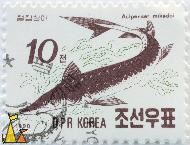 Sakhalin Sturgeon, DPR Korea, North Korea, stamp, fish, 10, 1990, Acipenser mikadoi