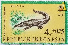 Saltwater crocodile, Republik Indonesia, Indonesia, stamp, reptile, crocodile, Crocodylus porosus, Saltwater crocodile, Buaja, 1966, 4+0.75