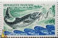 Saumon, Republique Francaise, France, stamp, fish, Saumon, Postes, 1972, Protection de la nature, 0.60, Salmo salar
