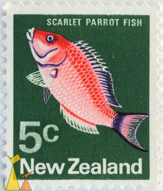Scarlet Parrot Fish, New Zealand, stamp, fish, 5 c, Pseudolabrus miles, Pseudolabrus rubicundus