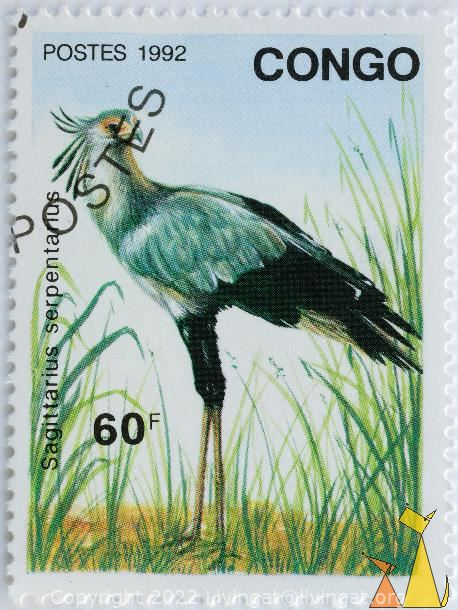 Secretarybird in Grass, Congo, stamp, bird, Sagittarius serpentarius, postes, 1993, 60 F