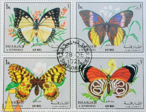 Set of Butterflies, Sharjah and Dependencies, Sharjah, stamp, air mail, insect, butterfly, Polyura eudamippus, 1 Rl, set, FDC, Caligo atreus, Zerynthia polyxena, Diaethria clymena