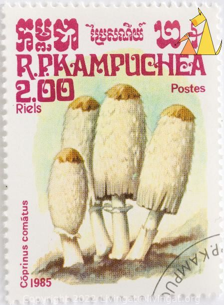 Shaggy ink caps, R.P. Kampuchea, Cambodia, stamp, plant, mushroom, Postes, 2.00 Riels, 1985, Coprinus comatus