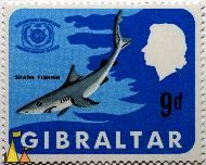Shark fishing, Gibraltar, stamp, shark, International tourist year, 1997, Tourism passport to peace, 9d, Queen Elizabeth