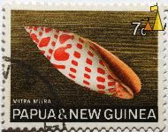 Shell, Papua and New Guinea, Papua New Guinea, stamp, shell, Mitra mitra, 7 c