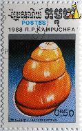 Shell, R.P. Kampuchea, Cambodia, stamp, Postes, 1988, 0.50 R, Helicostyla marinduquensis