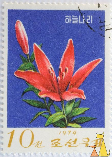 Shooting star lily, North Korea, stamp, plant, flower, Lilium concolor, 1974, 10