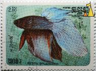 Siamese fighting fish, R.P. Kampuchea, Cambodia, stamp, fish, Postes, 1985, 2.00 Riels, Betta splendens