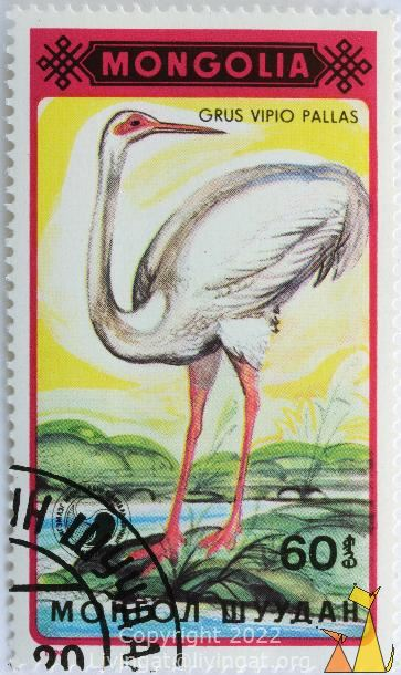 Siberian Crane Looking Back, Mongolia, stamp, bird, Grus vipio pallas, flying, 1990, 60, Grus leucogeranus