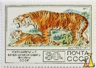 Siberian Tiger, CCCP, Russia, stamp, mammal, cat, 1977, 30 k, noyta, Амурский тигр, Panthera tigris altaica