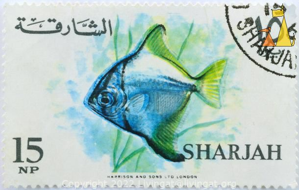 Silver moony, Sharjah, UAE, stamp, fish, Harrison and sones LTD, London, 15 Np, 10, Monodactylus argenteus