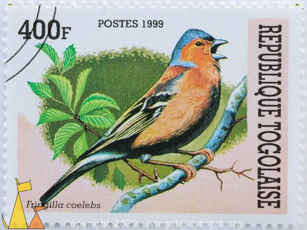 Singing Chaffinch, Republique Togolaise, Togo, stamp, bird, postes, 1999, 400 F, tree, Fringilla coelebs