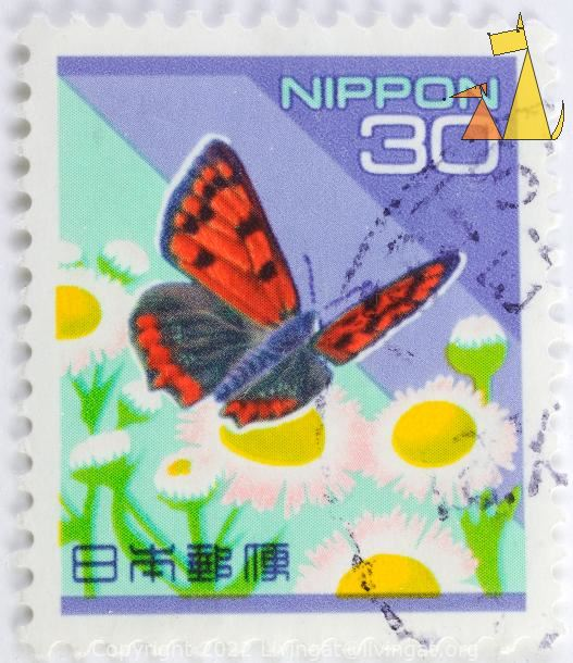 Small Copper, Nippon, Japan, stamp, insect, butterfly, 30, flowers, Lycaena phlaeas