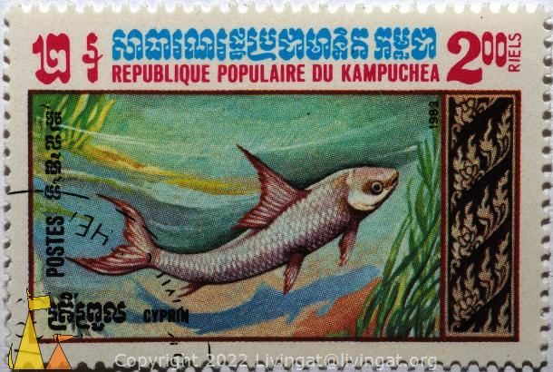 Small Scale Mud Carp, Republique Populaire du Kampuchea, Cambodia, stamp, fish, 2.00 Riels, Postes, 1983, Cyprin, Cirrhinus microlepis