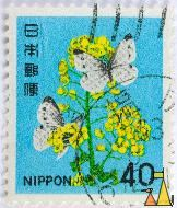 Small White, Nippon, Japan, stamp, flower, insect, butterfky, 40, Pieris rapae
