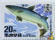 So-iny mullet, DPR Korea, North Korea, stamp, mammal, whale, 1996, 20, Liza haematocheilus