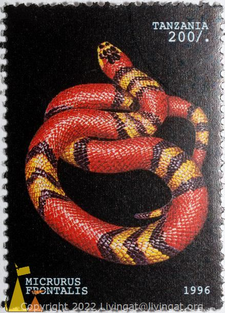 Southern Coral Snake, Tanzania, stamp, reptile, snake, Micrurus frontalis, Southern Coral Snake, 1996, 200