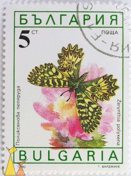 Southern Festoon, Bulgaria, stamp, insect, butterfly, 5 Ct, nowa, 1990, Zerynthia polyxena