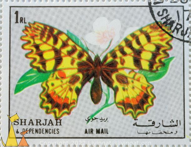 Southern Festoon, Sharjah and Dependencies, Sharjah, stamp, air mail, insect, butterfly, 1 Rl, Zerynthia polyxena
