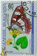 Southern White Admiral, Bulgaria, stamp, plant, insect, butterfly, flower, nowa, 1998, 60, Ligularia sibirica, Limenitis redukta, Limenitis reducta