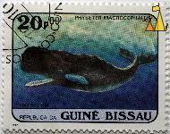 Sperm whale, Republica da Guiné Bissau, Guinea-Bissau, stamp, mammal, whale, 20.00 p, 1984, correios, Physeter macrocephalus, Physeter catodon