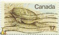 Spiny Softshell Turtle, Canada, stamp, reptile, turtle, 17, Postage, Postes, Trionyx spinifera, Apalone spinifera