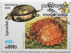 Spiny Turtle, Royme Du Cambodge, Cambodia, stamp, reptile, turtle, Heosemys spinosa, Spiny turtle, Postes, Bangkok, 2000, 4000R