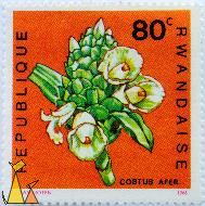 Spiral Ginger, Republique Rwandaise, Rwanda, stamp, plant, flower, J Van Noten, 1968, 80 c, Costus afer