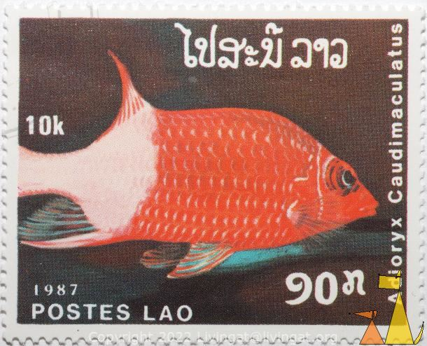 Spottailed soldierfish, Lao, Laos, stamp, fish, Postes, 1987, 10 k, Adioryx caudimaculatus, Spottailed soldierfish