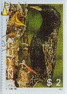 Starling Feeding Young, Guyana, stamp, feeding, young, bird, $2, 1987, Starling, Sturnus vulgaris