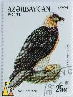 Starling on Yellow, Azerbajdzjan, stamp, bird, poctu, 1996, 300 M, Sturnus vulgaris