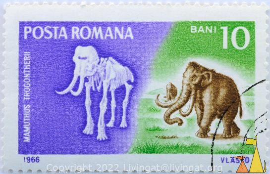 Steppe Mammoth, Romana, Romania, stamp, mammal, extinct, Mamuthus trogontherii, 10 Bani, Posta, Vlasto, 1966, skeleton