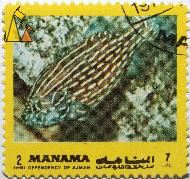 Striped Fish, Manama, Dependency of Ajman, Bahrain, stamp, fish, 2 Riyals