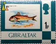Striped red mullet, Gibraltar, stamp, fish, 1 p, A G Ryman, 1977, Questa, Queen Elizabeth II, Mullus surmuletus