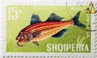 Striped red mullet, Shqiperia, Albania, stamp, fish, 15 q, Mullus surmuletus