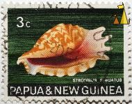 Strombus sinuatus, Papua and New Guinea, Papua New Guinea, stamp, shell, Strombus sinuatus, 3 c