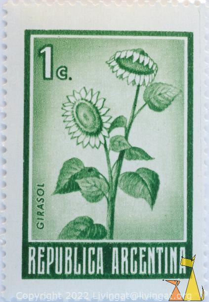Sunflower in green, Republica Argentina, Argentina, stamp, plant, flower, 1 C, Girasol, Helianthus annuus